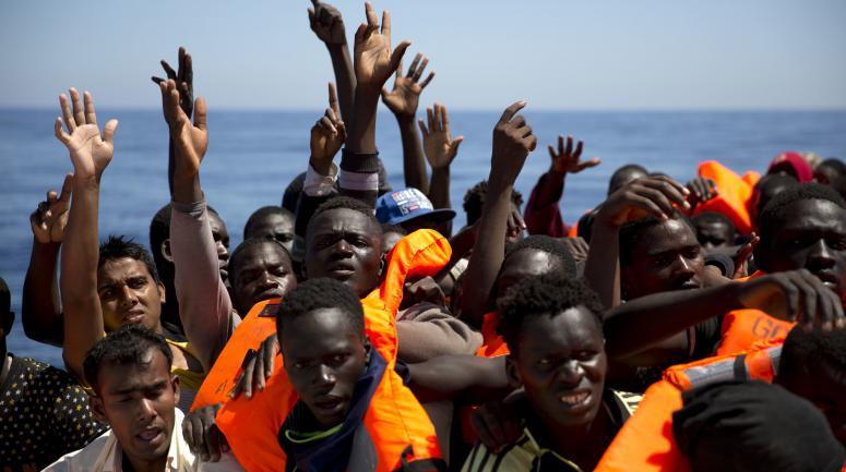 Génocide En Marche : importer des millions d'Africains et Arabo-musulmans c'est la mort des Européens