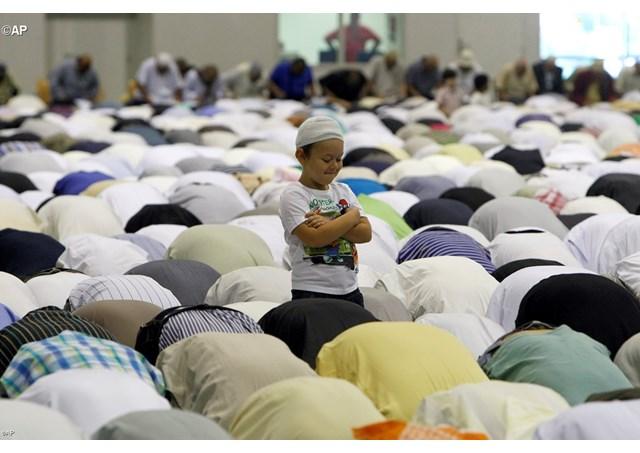 Vous voulez écrire à Noël Mamère, en délicatesse avec sa mosquée ?