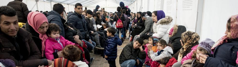 Annecy, un migrant devenu «réfugié» incendie les locaux de la Mairie : bientôt naturalisé ?