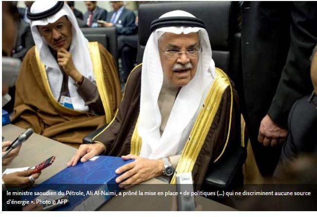 La cop21 osera-t-elle mettre l'Arabie Saoudite au ban des nations pour son attitude égoïste ?