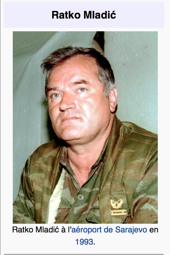 La République laïque est morte : aurons nous un Ratko Mladić qui s'élèvera ?