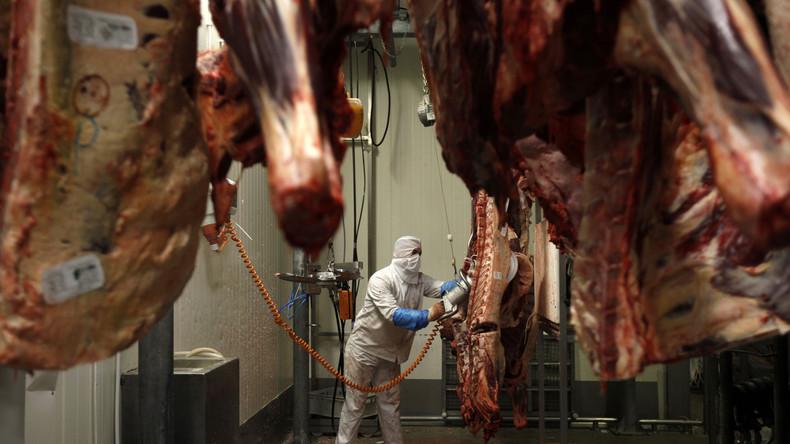 Depuis 2012, on sait que toute la viande abattue en Ile de France est halal… Rappel de Wikistrike