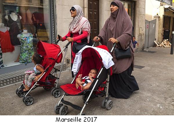 A cause de l'immigration, la France est devenue un pays de merde fui par ses propres habitants