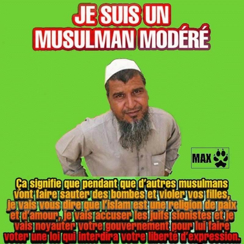 Il n'y a pas de musulmans modérés, il n'y a que de mauvais musulmans