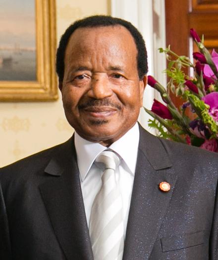 Les «fake news», vainqueur des élections au Cameroun ?