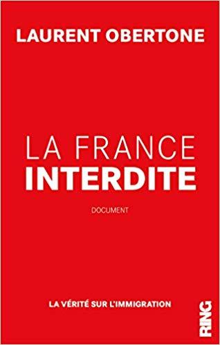 Conférence de Laurent Obertone sur l'immigration à Orange