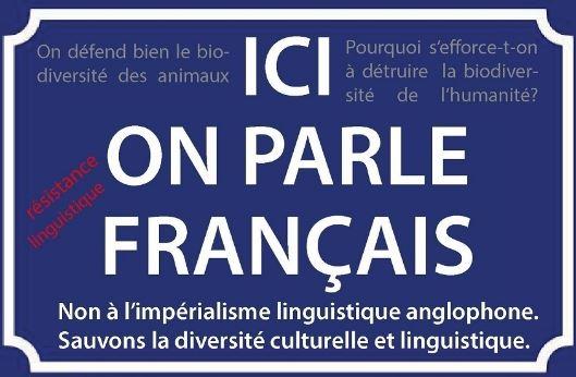Francophonie : défendre notre langue contre la violente offensive anglo-saxonne