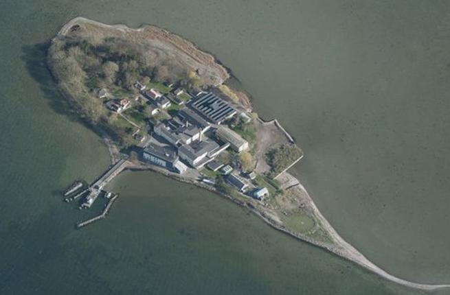 Danemark : les clandestins délinquants parqués sur une île ? Bravo !