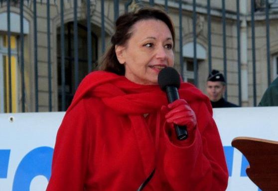 Pour slate.fr, ce serait Christine Tasin qui aurait, la première, dénoncé le  pacte de Marrakech