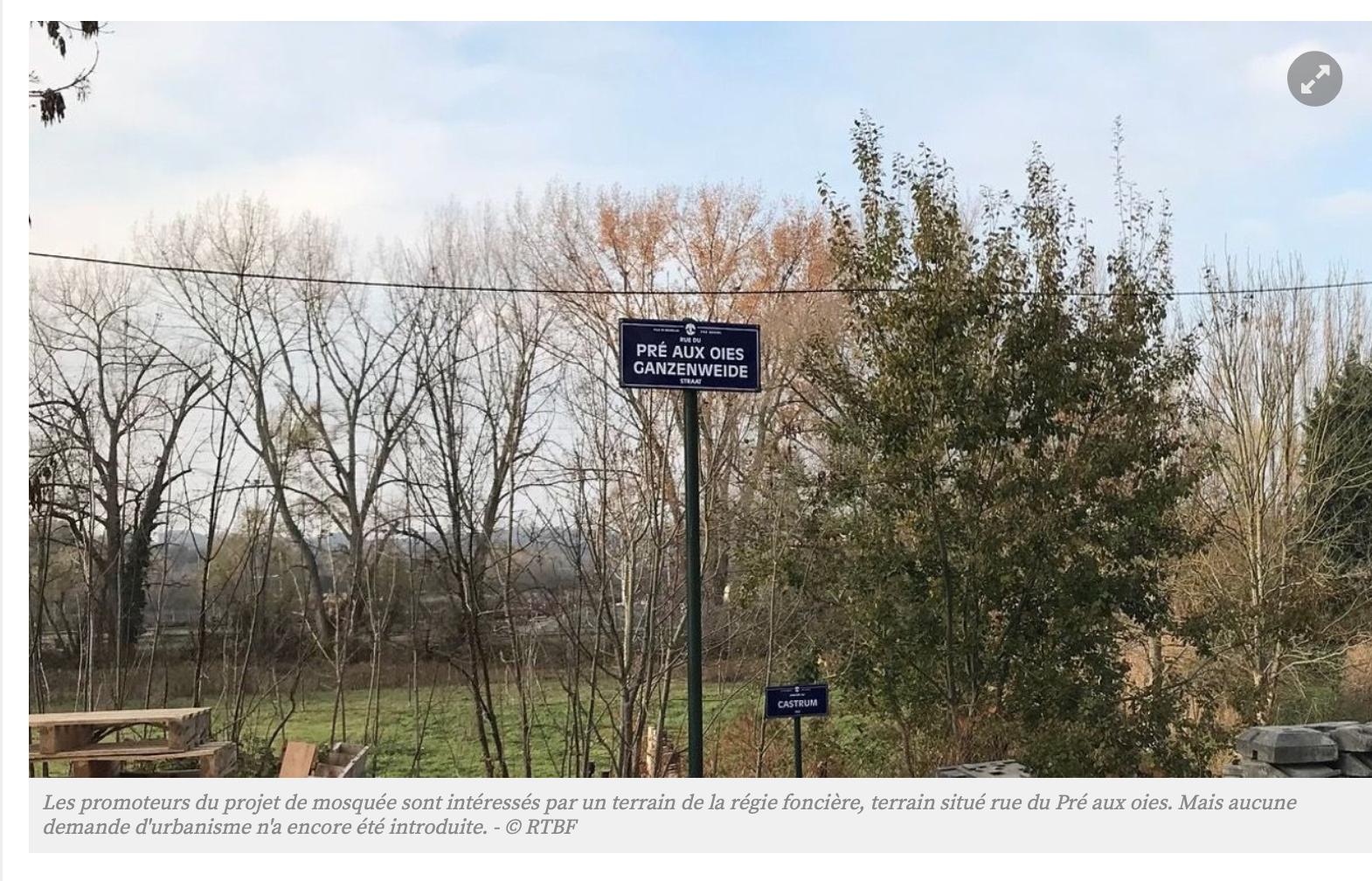 Belgique : les bosquets de Haren vont devenir une mosquée