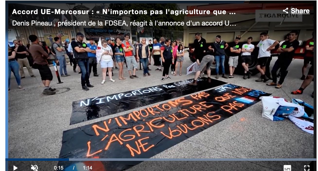 99 000 tonnes de boeuf à taux réduit vont déferler chez nous d'Amérique du Sud, merci Macron, merci l'UE !