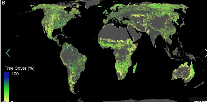 Réchauffement climatique: et si la solution était donnée par la nature ?