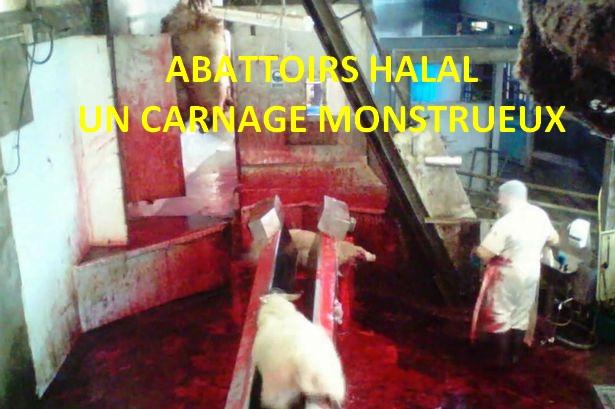 Soutenons la proposition de loi de Nicolas Dupont-Aignan pour la traçabilité de la viande