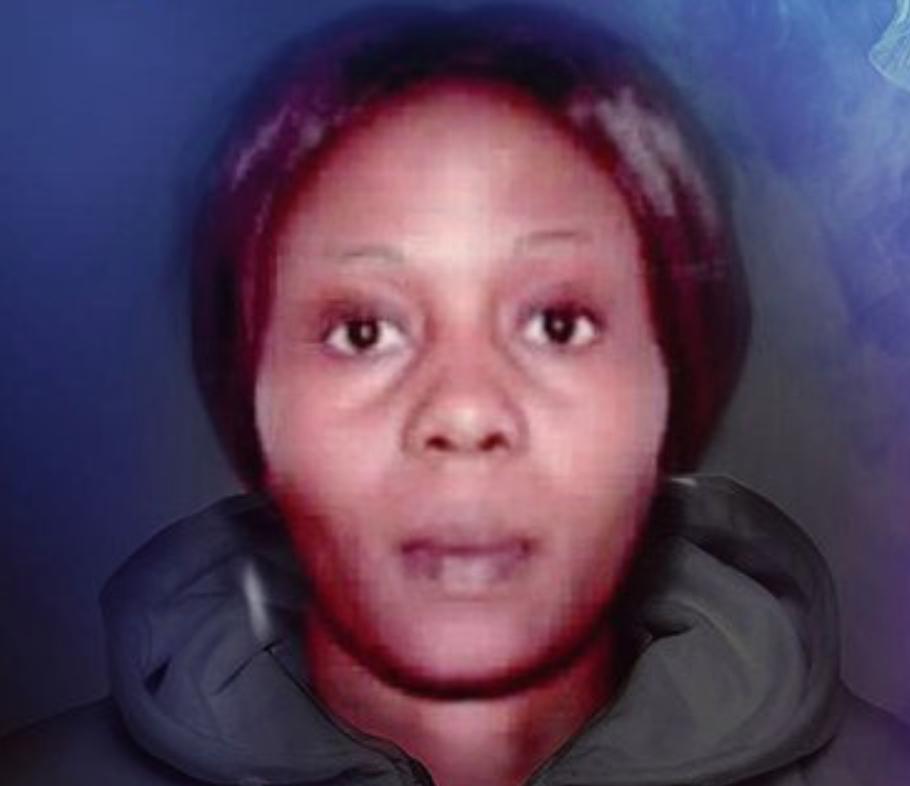 Catastrophe pour Schiappa et Taubira : c'est une Nigériane  qui est l'esclavagiste majeure de ce siècle