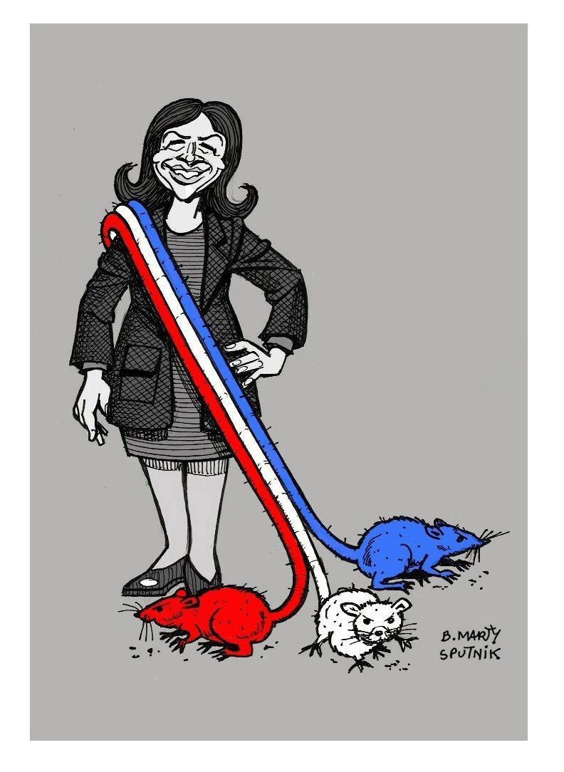 Pierre Cassen : Hidalgo, comme les islamos, veut interdire les caricatures (video)