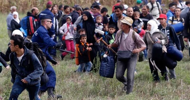 Les paroles des «migrants»….  et leurs actes !