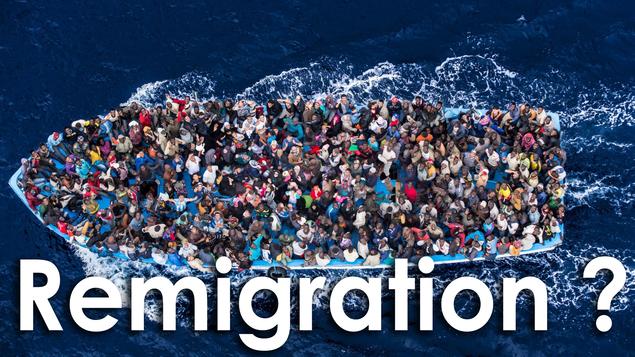 Attentat d'Angers par un Guinéen : mais bon sang, quand va-t-on lancer la remigration vers l'Afrique ?