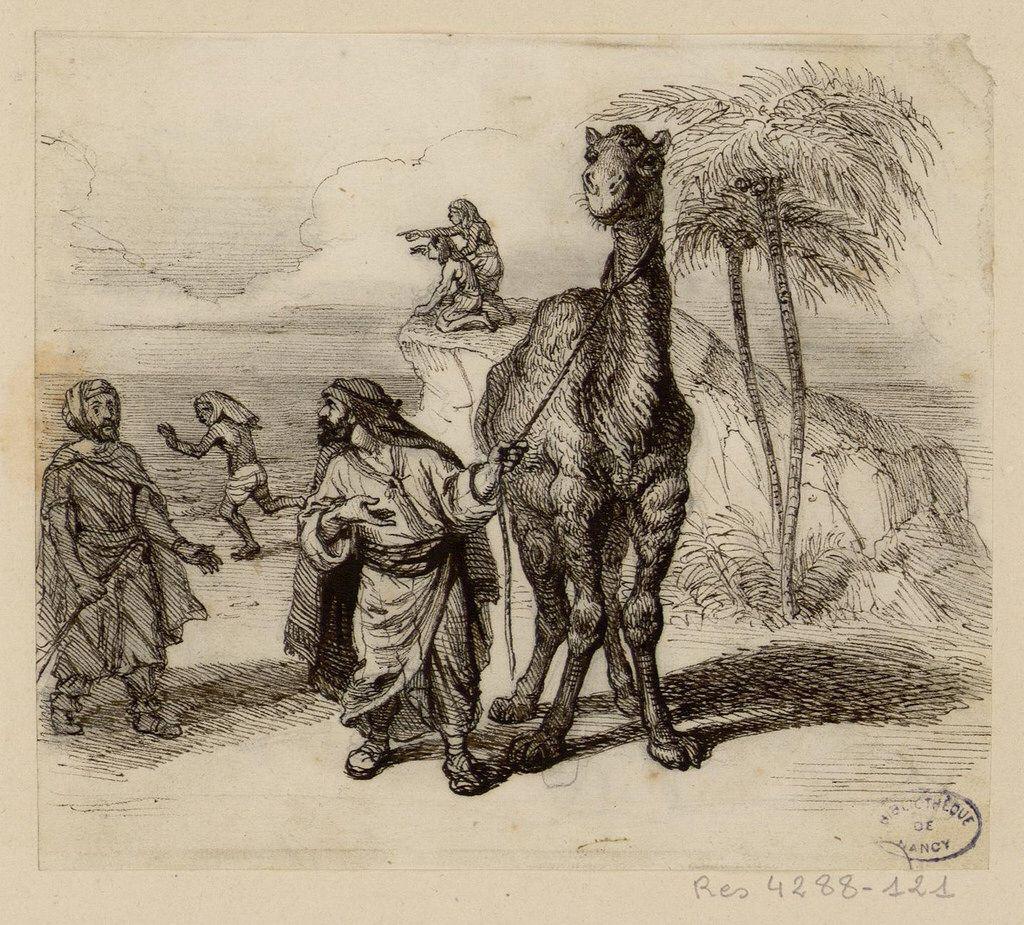 Pour Libé, traiter Taubira de guenon c'est raciste, traiter Messiha de chameau c'est juste du mauvais goût