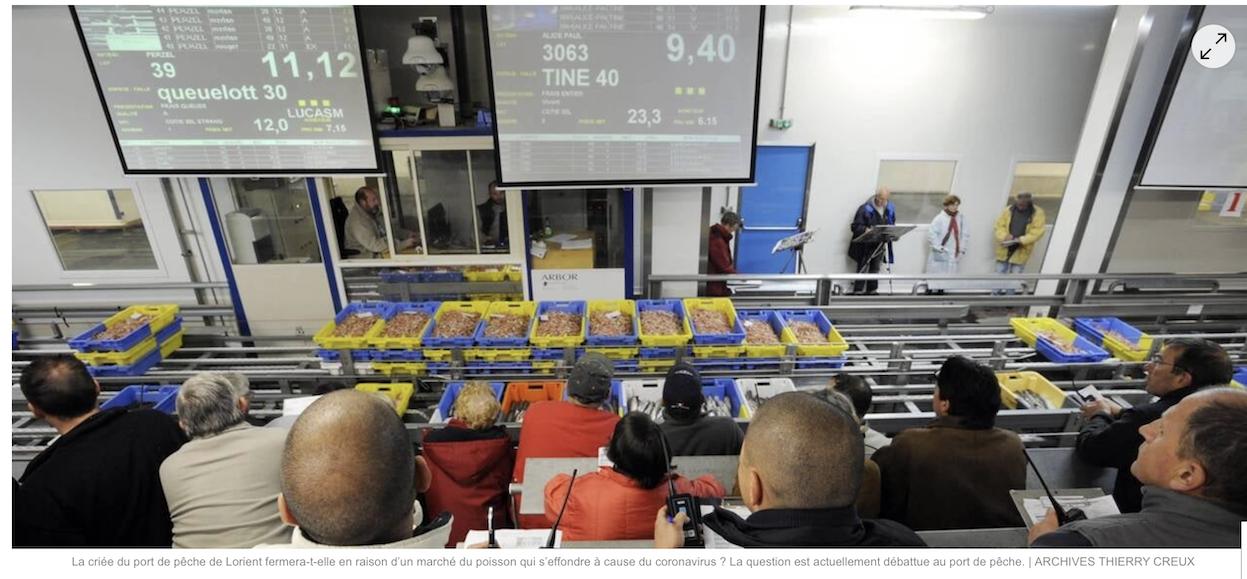 Plus de poisson parce que plus assez de consommateurs ? La faillite du système libéral est complète