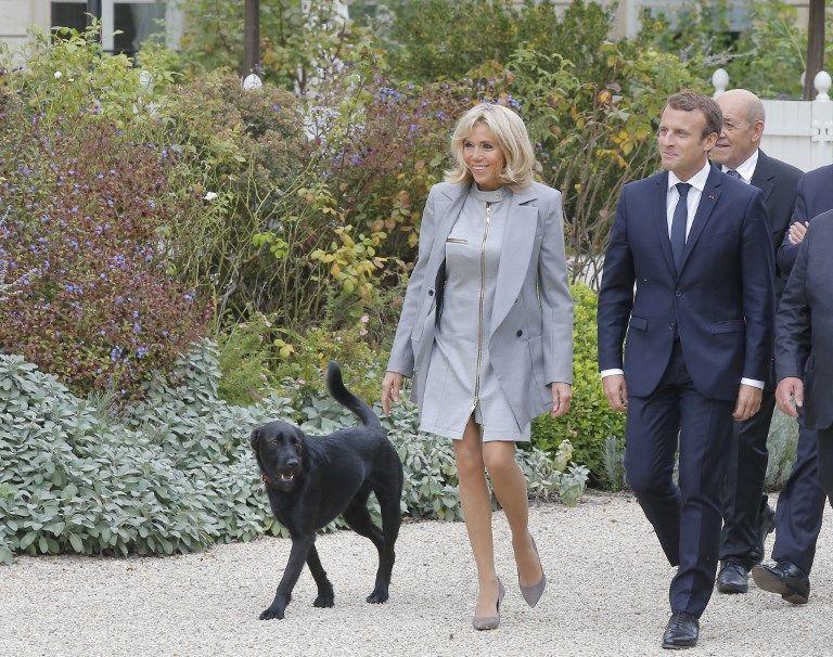 Autorisation de déplacement : on peut promener son chien mais pas assister à l'accouchement de sa femme !