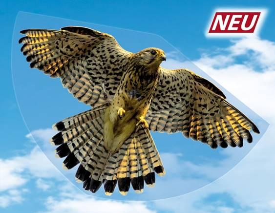 Allemagne : le faucon dictatorial remplace l'aigle impérial